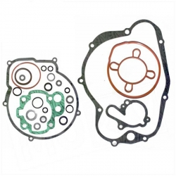 Gasket set AM6
