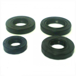 Oil seal set for PGO Trex and Big max