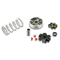 Variator kit Malossi for Sym Mio - Symphony - Orbit - Peugeot Tweet - Kisbee - Speedfight 3-4