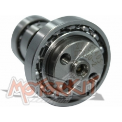 Camshaft hight RPM for Anima 190cc with decompressor