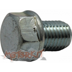 Oil drain bolt Anima