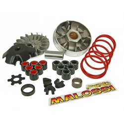 Malossi MHR-TEAM variator for Nitro Aerox Booster Bw's with Minarelli engine