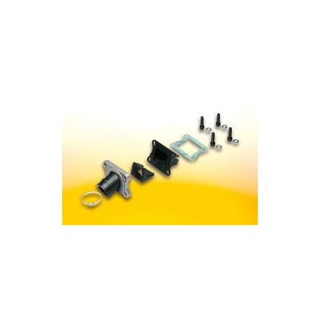 Racing reed valve for AM6 type pwk