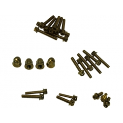 Stainless steel engine screw kit Honda MSX125 Gold