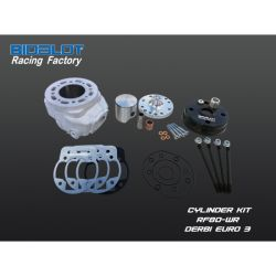 Racing Factory kit 90cc -WR DERBI EURO 3