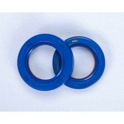 Teflon and Viton Oil Seals for crankshaft Piaggio/Gilera