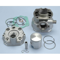 Cylinder kit Polini Derbi Iron cast